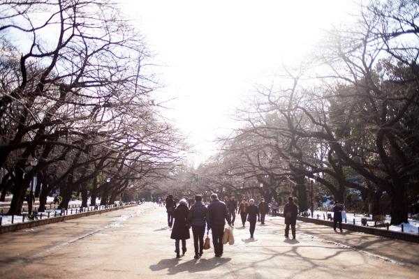 Japan 2014-78